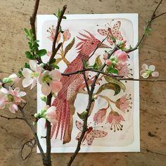 'Hortus Rosea No.1' watercolor on paper by Holly Ward Bimba aka Golly Bard  #pink #blushpink #botanicals #botanicalart #watercolor