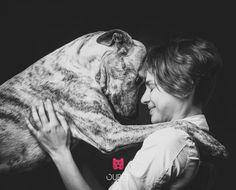 #Koirienkehonkieli, Koirien kehonkielen ymmärtäminen on todella tärkeää, sillä yhteisen kielen puuttuessa on meidän ymmärrettävä signaalit sekä elekieli, jolla koirat viestittävät meille tunteistaan <3    Do you know that if the dog points his tail between two legs, he is probably feeling uncomfortable? Dog's body language can tell many things <3