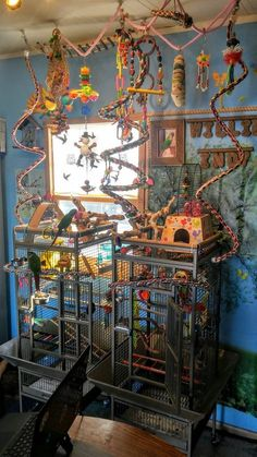 My birds would love this so much. Heck, I would love this. Coolest setup ever! My birds would love this. Parakeet Cage, Cockatiel Cage, Budgie Parakeet, Budgies, Parrots, Diy Parrot Toys, Diy Bird Toys, Homemade Bird Toys, Parrot Pet