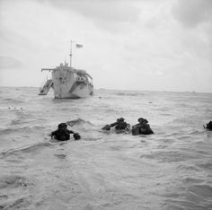 D-day – British Forces during the Invasion of Normandy 6 June 1944 Troops wading ashore from an LCI(L) on Queen beach, Sword area, 6 June D Day Normandy, Normandy Beach, Normandy Ww2, World History, World War Ii, D Day Photos, Normandy Invasion, D Day Landings, Cherbourg