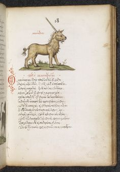 "jothelibrarian: "" Medieval manuscript of the week is a unicorn! This is an illustration from a late medieval (circa 1550-1560) manuscript produced in Paris. The text is Greek, and the book is rich with eighty illustrations of animals. This image..."