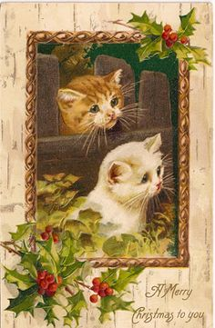 Printed in Germany. From a series of Christmas postcards featuring kittens peering over or through fences.