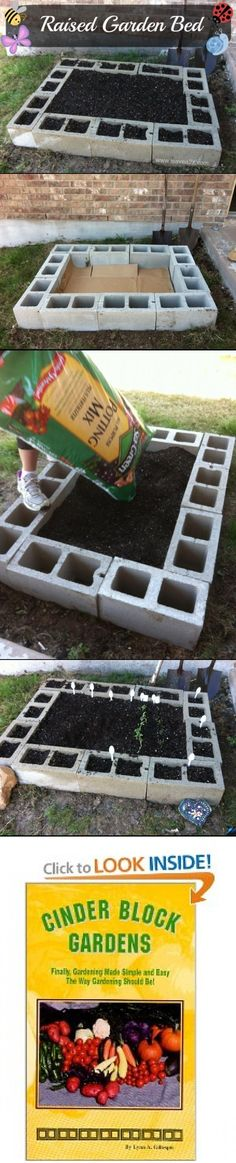 cinder block raised garden -- ways to beautify the blocks? I Have my raised beds done with cinder blocks - much cheaper than other options - mine are capped with cinder block caps and painted Raised Bed Garden Design, Garden Design Plans, Outdoor Projects, Garden Projects, Raised Beds, Lawn And Garden, Garden Tips, Summer Garden, Dream Garden