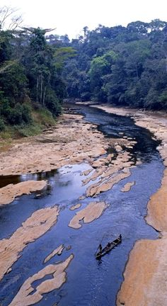 River in jungle Northern Zaire Stock Photo Rd Congo, Congo River, Out Of Africa, East Africa, Congo Free State, African Safari, African Men, Belgian Congo, Rivers And Roads
