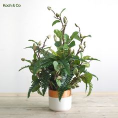 Two Tone Garden 🌿 - Simply add magnolia bud sprays and a boston fern to a rose gold container and watch the colours blend. Artificial Silk Flowers, Color Blending, Sprays, Ferns, Garden Plants, Bud, Magnolia, Boston, Container