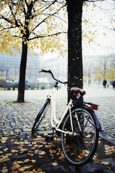 Autumn bicycle in Copenhagen