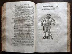Ulisse Aldrovandi - Wikipedia