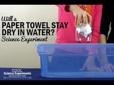 Can a Paper Towel Stay Dry Under Water? Easy experiment - concept of air