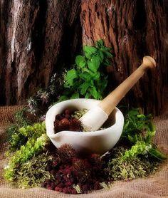 Herbalism.