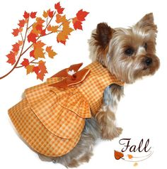 ATTENTION: This is a SEWING PATTERN listing for Pattern 1628 Ruffle Dog Dress to make the Thanksgiving Dog Dress.    PATTERN BUNDLES - Purchase