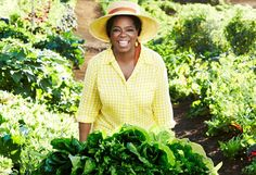 Who knows that Oprah Winfrey is a true gardener! She turned her Maui land into a fabulous organic garden with hundred kinds of fresh vegetables, herbs and fruits. #celebritynews #oprah #gardening #organic