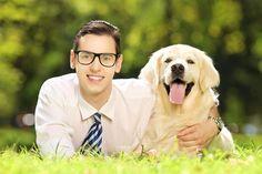 Receita de comida caseira para cachorro Rottweiler, Pet Peeves, Puppies For Sale, Border Collie, Dachshund, Animals And Pets, Pugs, Dog Food Recipes, Labrador Retriever
