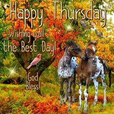 Happy Thursday. God Bless.