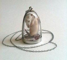 Domed Taxidermy Kitten Mouse Necklace by PreciousCreature on Etsy, I would never wear this but I'd love it for a cabinet of curiosities