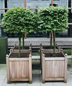 Garden Planters, by Way of Belgium