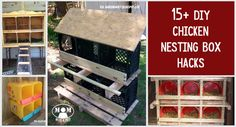 If you're trying to cut the cost of building a chicken coop, we've got some great DIY hacks for making your own chicken nesting box. Family Emergency Binder, Chicken Nesting Boxes, Emergency Preparedness Kit, Emergency Rations, Get Home Bag, Pvc Projects, Building A Chicken Coop, Raising Chickens, Keeping Chickens