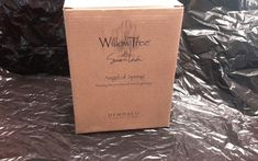Willow Tree Angel of Spring Box and packing NO ANGEL