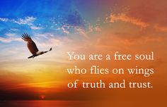 You find freedom inside - nowhere else. In the heart of every human being is that one space that is free, which is filled with peace, and which is full of love.  - Prem Rawat