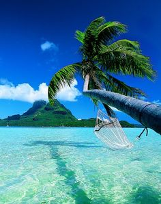 Would love to just lie down on that hammock and enjoy the beautiful scenery of Bora-Bora