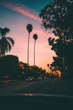 54 Ideas Summer Nature Photography Trees Sky For 2019 California Palm Trees, Palm Tree Sunset, California Sunset, Sunset Beach, Summer Nature Photography, Tree Photography, Sunset Photography, Summer Wallpaper, Nature Wallpaper