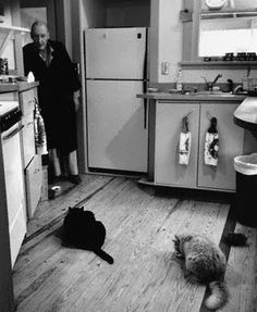 WILLIAM S. BURROUGHS (1914-1997) The Cat Inside is one of my favorite books, despite how sad some of the stories are