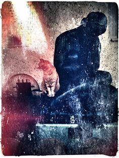 The cat and the woman, Lucian Olteanu, Photographie, Téléphone mobile Telephone, Master Chief, Cats, House, Fictional Characters, Ideas, Life, Photography, Gatos