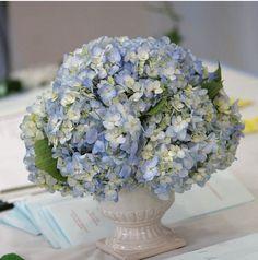 white vase of blue hydrangea  flowers centerpiece