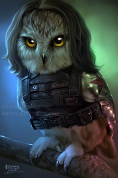 The Owlvengers - Bucky the winter owl