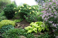 May 2011 Sarah's Garden