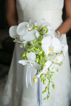 lovely classic orchid bouquet