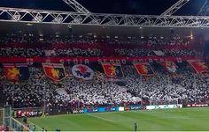 Genoa-Udinese: Forventede startopstillinger!