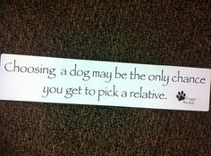 Choosing a dog may be the only chance you get to pick a relative.