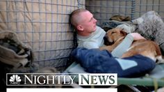 MAJOR TISSUE ALERT <3  Meet The Woman Reuniting Vets With Their Retired Service Dogs | NBC Nigh...
