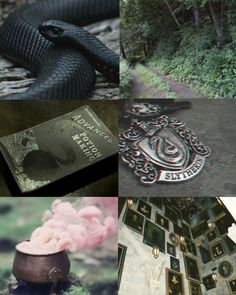 slytherin aesthetic - Google Search