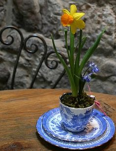 Cute centerpiece idea. Flower in a teacup.>>>finally! A use for my china!