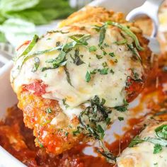 Chicken Parmesan Recipe Food Com. Quick And Easy Family Meal Ideas For Baseball Season A . For The Best Chicken Parmesan Take A Lesson From The . General Tao Chicken, All You Need Is, Chicken Parmesan Recipes, Baked Chicken, Skillet Chicken, Cheesy Chicken, Keto Chicken, Rotisserie Chicken, Healthy Chicken