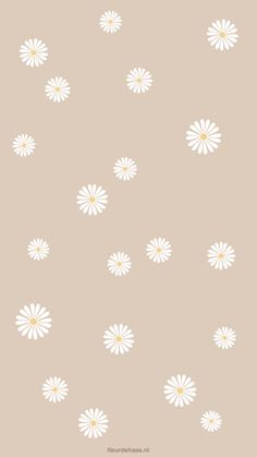 Many people believe that there is a magical formula for home decoration. You do things… Daisy Wallpaper, Cute Patterns Wallpaper, Iphone Background Wallpaper, Aesthetic Pastel Wallpaper, Aesthetic Wallpapers, Backgrounds For Iphone, Aztec Wallpaper, Iphone Wallpapers, Simple Wallpapers