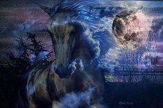 Beautiful Horse Moonlight Dreams Art