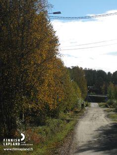 Road in the municipality of Muonio, Finnish Lapland. Photo by Municipality of Muonio. #filmlapland #arcticshooting #finlandlapland