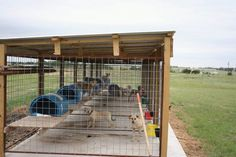 panels welded to metal frame, then attached/connected with wooden posts (notice RUST!), but dogs have limited access to the wood post