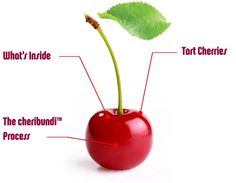 """""""Cheribundi uses Montmorency tart cherries and many of them are grown right here in northern Michigan and can be sampled this week at Traverse City's annual National Cherry Festival."""""""