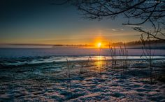 Pola, Lasy, Zachód, Słońca, Zima