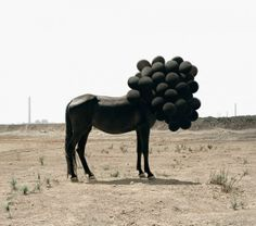 Surreal Photography by Andrea Galvani