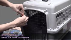 """Pets On Airplanes: """"How To Assemble Your Pet Carrier For Airline Approval"""""""
