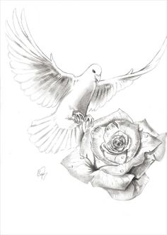 Rose Drawing Dove and Rose by vitostone on DeviantArt Dove And Rose Tattoo, Rose Tattoos For Men, Dove Tattoos, Tattoos Skull, Animal Tattoos, Body Art Tattoos, Dove Tattoo Design For Men, Floral Tattoo Design, Painting & Drawing