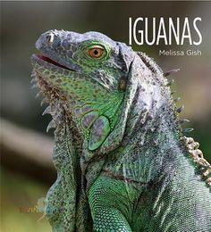 Iguanas, Melissa Gish, 9781608185672, 11/19/15