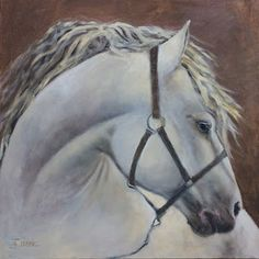 """Where ART Lives Gallery Artists Group Blog: Equine Fine Art Painting, White Horse """"White Horse Head"""" by Painter of the American West Nancee Jean Busse"""