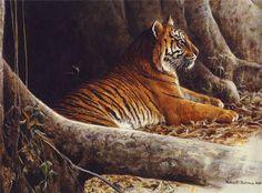 The Art of Robert Bateman Wildlife Paintings, Wildlife Art, Animal Paintings, Big Cats Art, Cat Art, Animal Sketches, Animal Drawings, Big Cat Diary, Lion Tigre