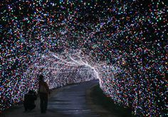 Last Saturday, 4.5 million LEDs lit up the Nabana no Sato theme park of Kuwana, Japan, kicking off their annual Winter Light Show that runs until March 8th. This year's theme is one of flowers, illuminated in 64 billion colors that are reported to change color so quickly that they actually resemble a river more than a field of blooming plants.