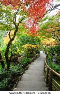 stock photo : The autumnal look of the japanese garden inside the famous historic butchart gardens (built in 1903), vancouver island, british columbia, canada